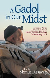 A Gadol in Our Midst [Hardcover]