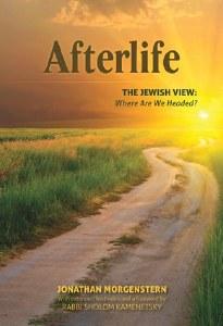 Afterlife [Hardcover]