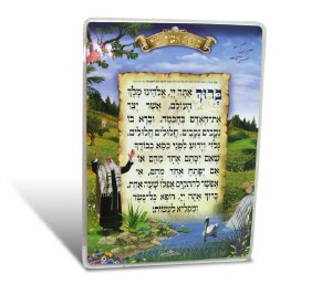 Asher Yatzar Laminated Card Surrounded by Scenery Image