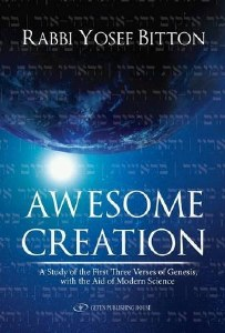 Awesome Creation [Paperback]
