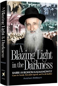 A Blazing Light in the Darkness [Hardcover]