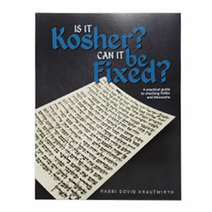 Is it Kosher? Can it be Fixed? [Paperback]