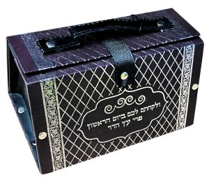 Esrog Box Vinyl with Handle Silver Print Design