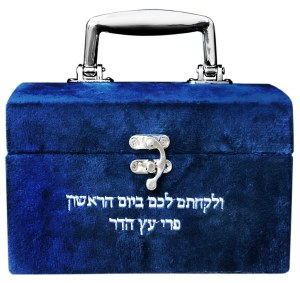 Esrog Box Hard Treasure Chest Blue Velvet