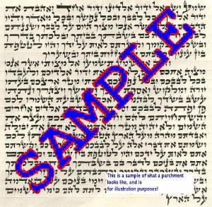 Exquisite Mezuzah Parchment Scroll Ashkenazi 10cm Ari Script by Rabbi Boimel