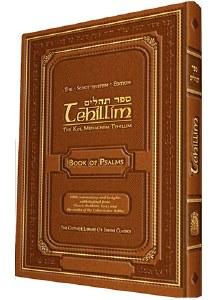 Tehillim The Schottenstein Edition [Hardcover]