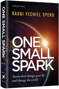 One Small Spark [Hardcover]