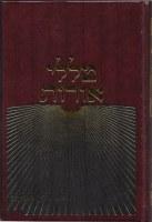 Talelei Oros Eichah Bein Hametzarim [Hardcover]