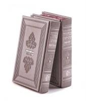 Machzor Eis Ratzon 2 Volume Set Faux Leather Margalit Design Ksaf Saf Edut Mizrach