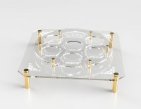 Seder Plate Acrylic Designed with Elevated Simanim Tray Gold 16""