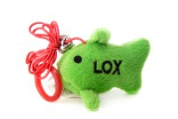 Plush Toy Lox the Fish with Catnip