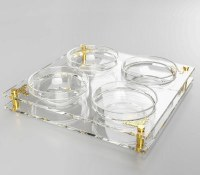 """Acrylic Square Dip Dish 4 Sectioned Adorned with Gold Plates and Legs 10.5"""""""