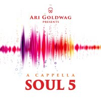 A Capella Soul 5 CD