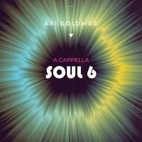 A Cappela Soul 6 CD