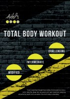 Aidel's Gym Total Body Workout DVD