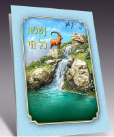 Nishmas Kol Chai Bi Fold Laminated Designed with Scenic View
