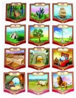 "Laminated Sukkah Cards 12 Shevatim 6.5"" x 7"" 12 Pieces"