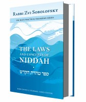 The Laws and Concepts of Niddah [Hardcover]