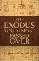 The Exodus You Almost Passed Over [Hardcover]