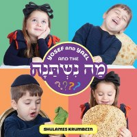 Yosef and Yael and the Ma Nishtana [Boardbook]