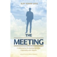 The Meeting [Paperback]