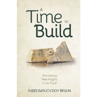 A Time to Build [Hardcover]