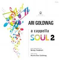 A Cappella Soul 2 CD
