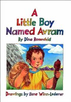A Little Boy Named Avram [Hardcover]