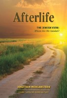 Afterlife [Hardcover]