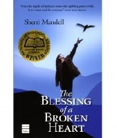 The Blessing of a Broken Heart [Paperback]