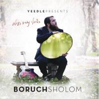 Boruch Sholom Blesofsky - Bishvii CD