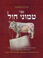 Sefer Temunei Chol Hebrew [Hardcover]