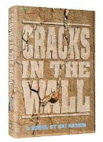 Cracks in the Wall [Hardcover]