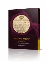 Erev Pesach Shechal BeShabbos [Hardcover]
