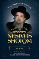 Gems from the Nesivos Shalom: Pirkei Avos [Hardcover]