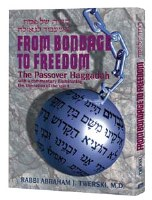 From Bondage To Freedom Haggadah [Hardcover]