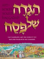 Haggadah: Illustrated Youth Edition [Hardcover]