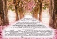 Ketubah Journeys Design Hebrew English Text