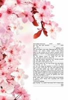 Pink Blossom Ketubah