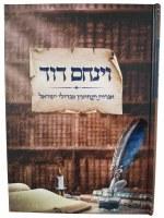 Vayinachem Dovid [Hardcover]