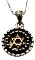 Silver Star of David Necklace With Gold Plating #MJB1926