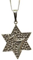 Silver Star Of David Necklace #MJB5322