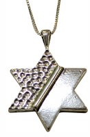 Silver Star Of David Necklace #MJB5323