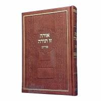 Orah Zu Torah Purim