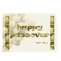 P-906 Passover Card