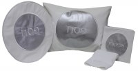 Pesach Set Vinyl 4 Piece White and Silver Circle Design