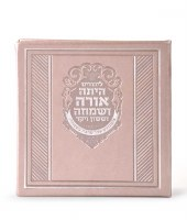 Megillas Esther Booklet with Birchas Hamazon Faux Leather Square Silver Meshulav [Hardcover]