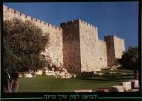 Chomos Yerushalayim Walls of Jersualem Laminated Sukkah Poster