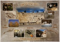Shalosh Regalim Three Festivals Laminated Sukkah Poster