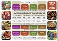"Laminated Sukkah Poster Mei'ein Shalosh 20"" x 28"""